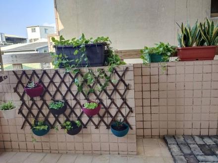 Room 2531 台南市區,近南紡夢時代,2人套房,9坪(約27m2)